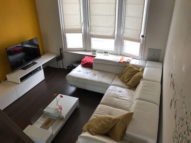 Gezellige duplex appartement met zonnig dakterras! - Sint-Niklaas - Flat
