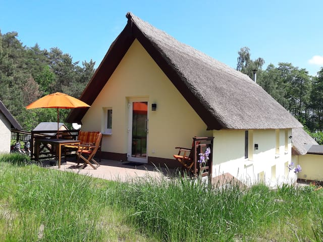 Ferienwohnung im neu sanierten Reethaus auf Usedom