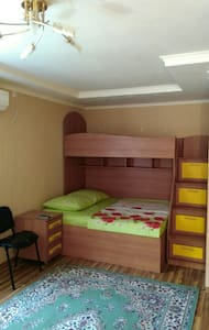 Cozy 1 room appartament - Cherkasy - Leilighet