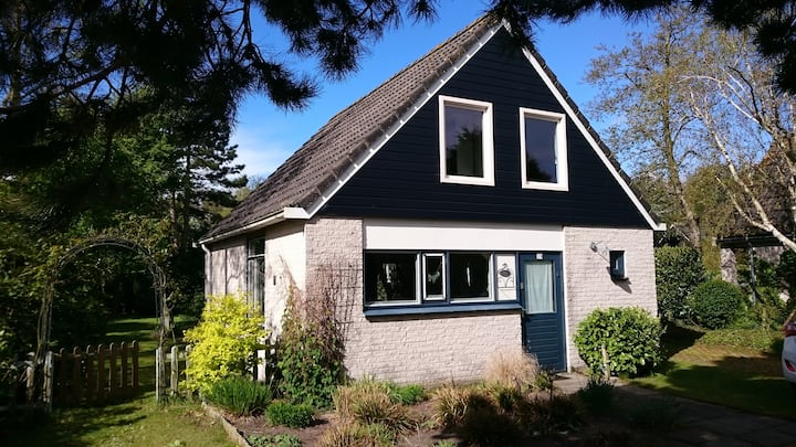 Attractive comfortable holiday home in the dunes