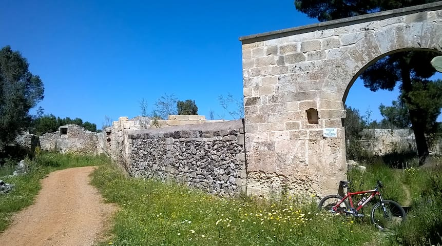 From city to sea by bike. Spring countryside!