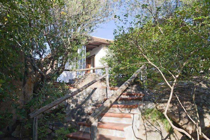 Portorotondo' s greenery - Olbia - Apartament