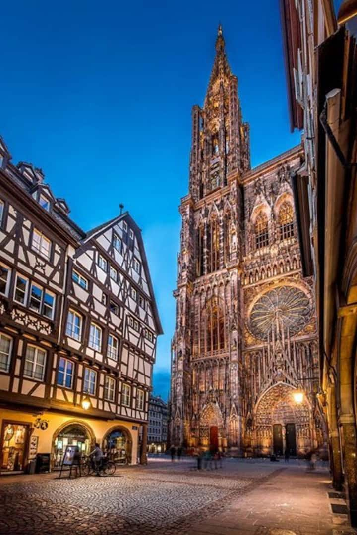 2 steps from the Christmas market-Gutenberg- large studio