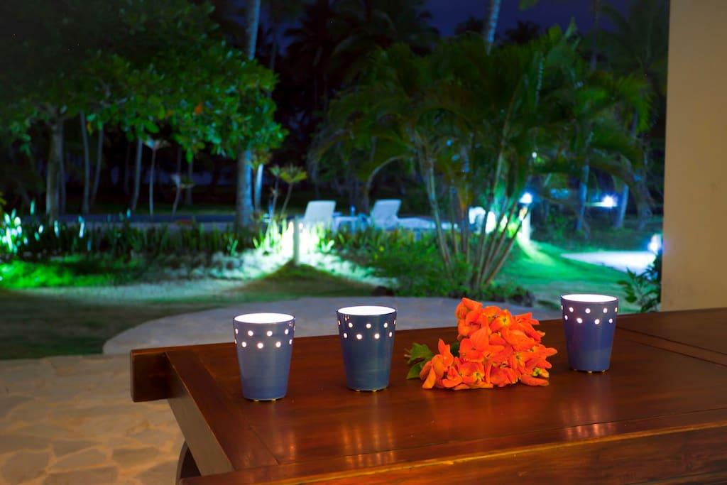 Tropical garden in front of studio terrace