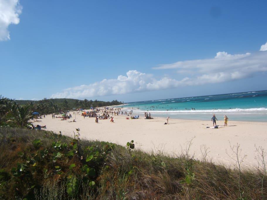 Famous Flamenco Beach