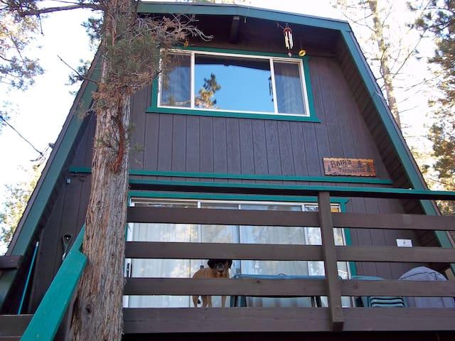 Cozy Treehouse Cabin