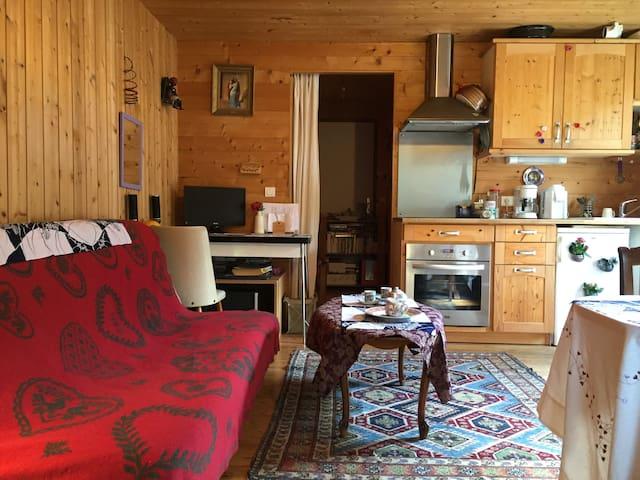 Chaleureux studio, cœur du Perigord - Saint-Léon-sur-Vézère - อพาร์ทเมนท์