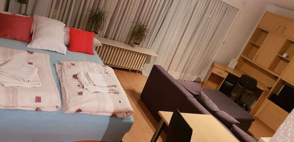 Central Flat in Mannheim-near Train Station-up 4 p