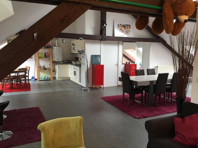Grand Loft en plein centre de Lille - Lille - Appartement