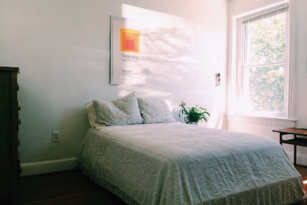 Private Bedroom - beautiful light