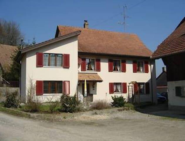 Studio in ländlicher Ruhe - Hettenschwil - Apartamento