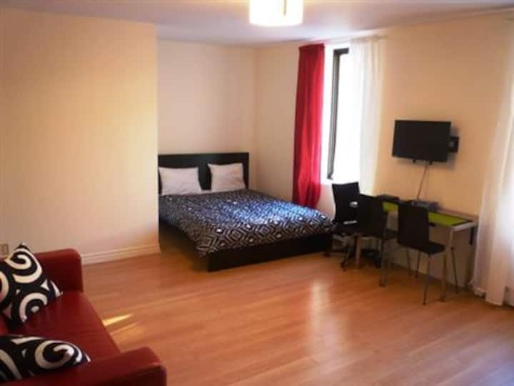 #307 Gorgeous, Fully Furnished Studio in Downtown East