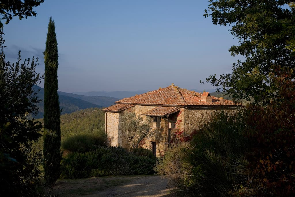 Tuscan house with infinity pool houses for rent in for Rent a house in tuscany