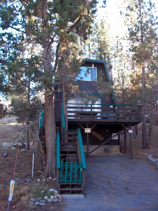 Sits above the street on a hillside between the trees with a deck.