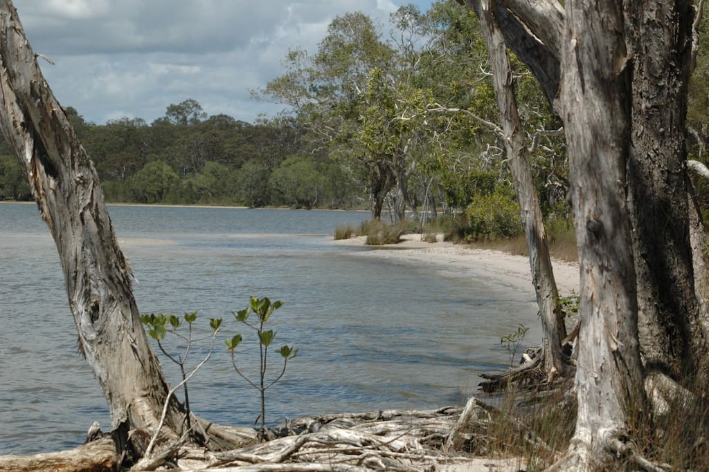 Quick walk to Lake Cooroibah through back of property.