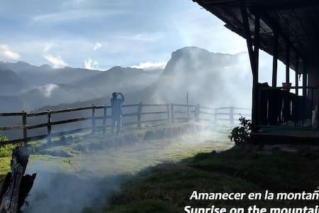 Cabaña entera * 4 camas * Valle de Cocora*Salento
