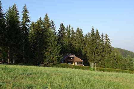 Holiday house with lawn and forest