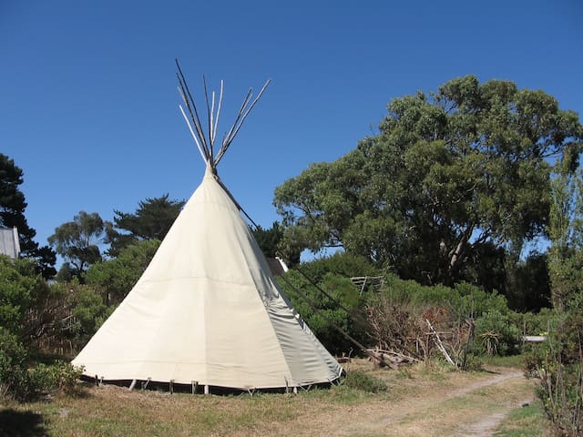 Black Eagle Tipi