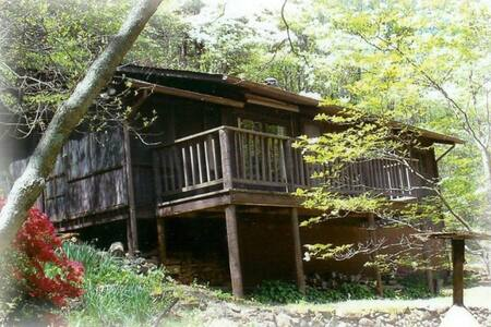 Old Rag Mountain Cabin - Syria - Kabin