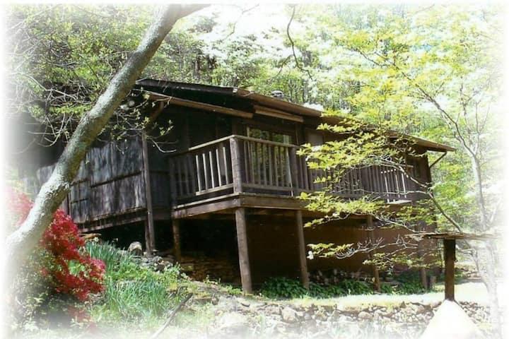 Old Rag Mountain Cabin