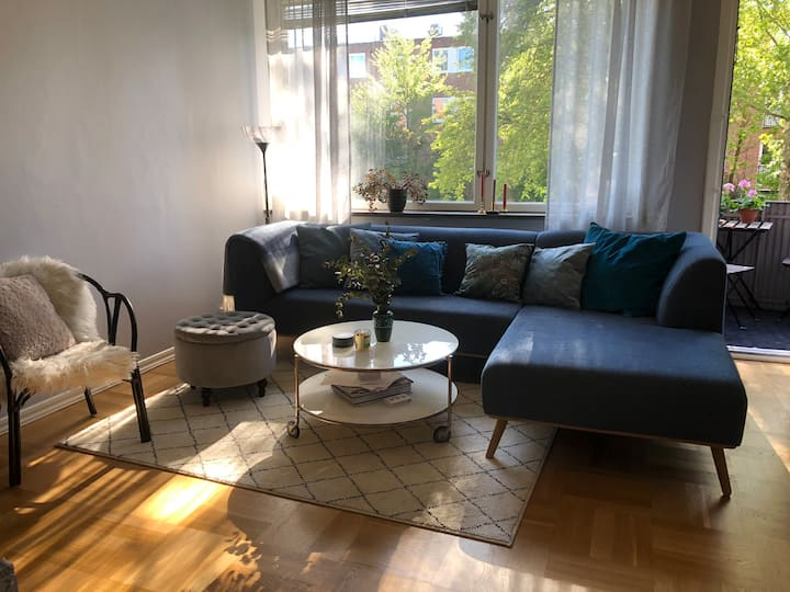 entire cozy apartment in central Lund