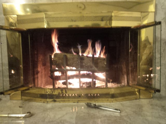 For winter enjoyment: wood burning fireplace with Grate Wall of Fire.  wood provided!