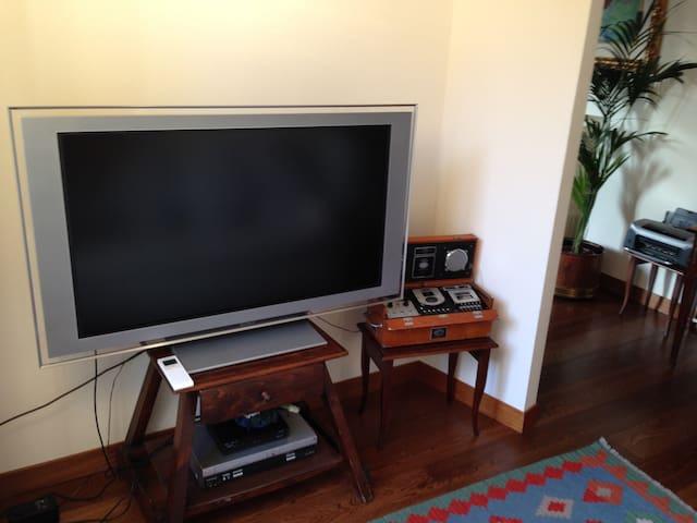 televisone digitale terrestre 55 pollici Sony . con lettore dvd e videocassette. stereo original Boston