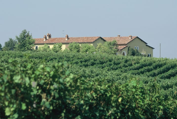 Winery in the heart of Gavi-shire - Gavi - House
