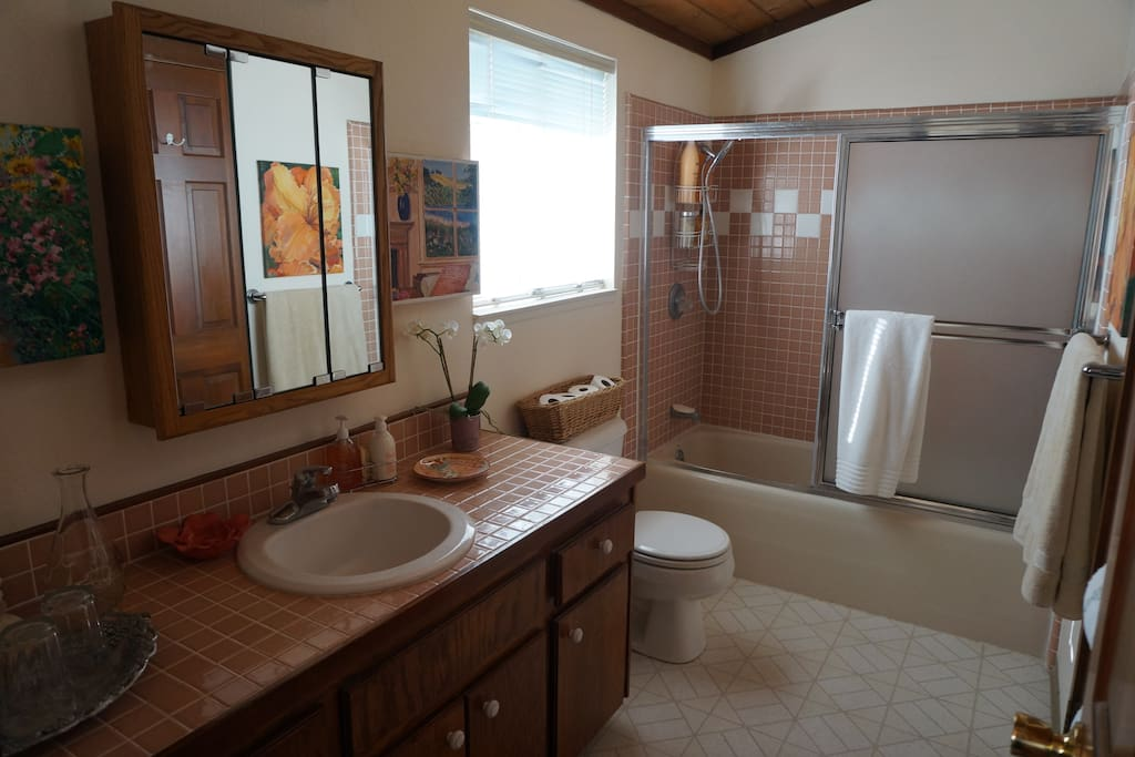 Your private bath with all you would need