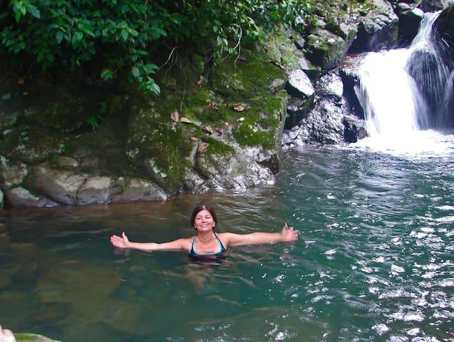 Toucan Cabin -Bocas del Toro Panama