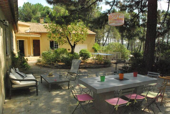 Familial Villa in Provence - Piolenc