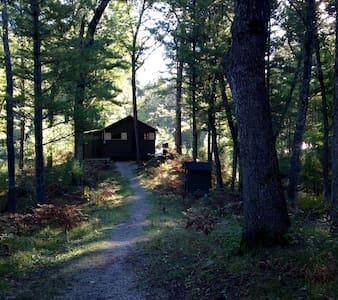 Pere Marquette Riverfront Cabin