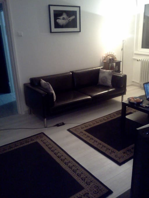 The leather IKEA sofa in the living room