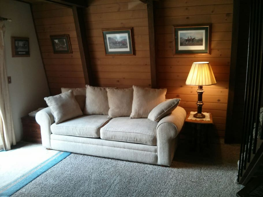Large living room with 2 sofa beds. The white one is queen size.