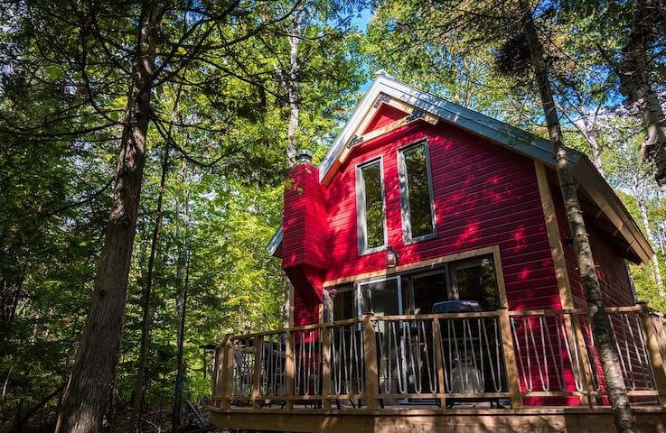 P'tite nature, maisonnette écologique en forêt