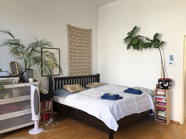 Spacious Room near Yppenplatz