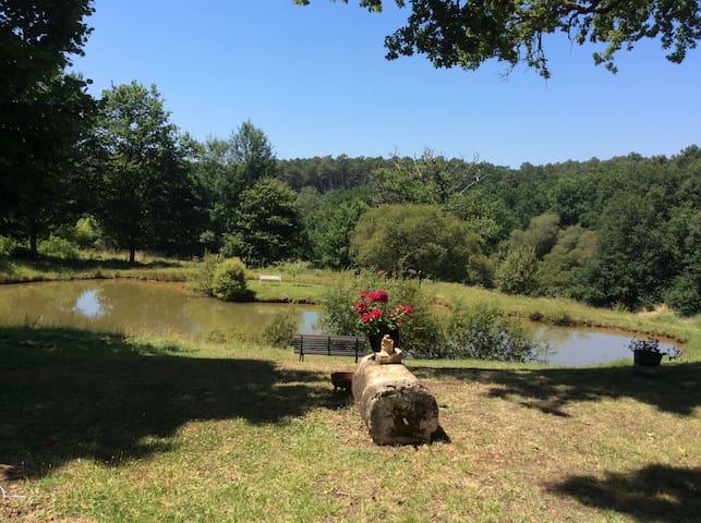 Silence, Nature et Paix