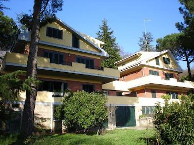 Villa vista lago trevignano roma case in affitto a for Case in affitto con seminterrato finito