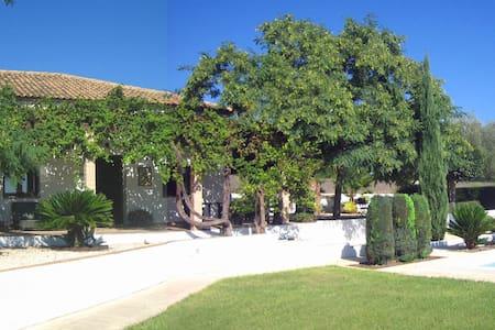 Finca Mirasol - Bétera - House