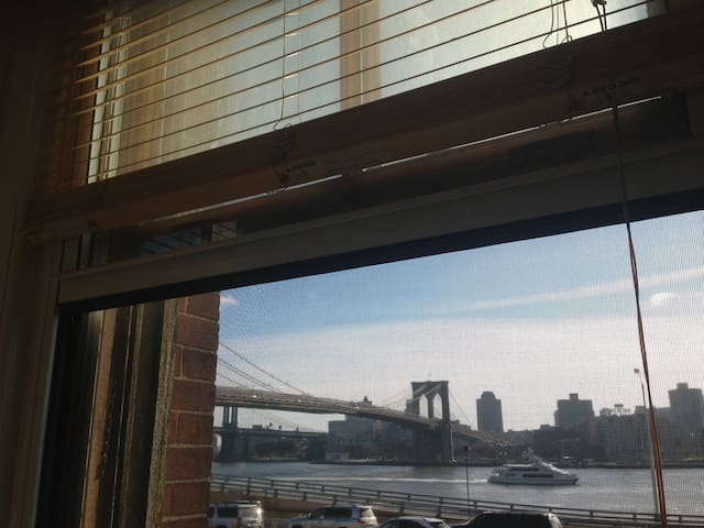 Sun-filled 1 bedroom Seaport - New York - Apartment