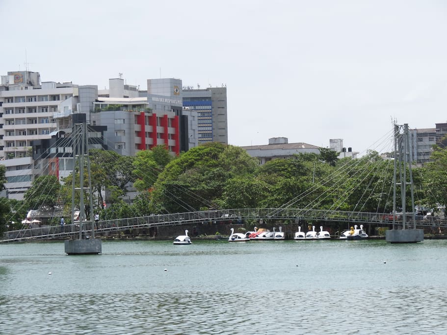 Paddle boats on the Beira Lake, within walking distance from the Zak Residences