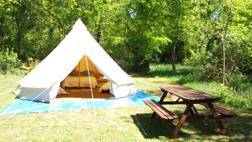 5m Belle Tent in a woodland setting