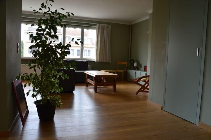 chambre dans appartement rénové et lumineux