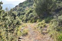 Μονοπάτια μη σηματοδοτημένα /hiking paths (no marked)