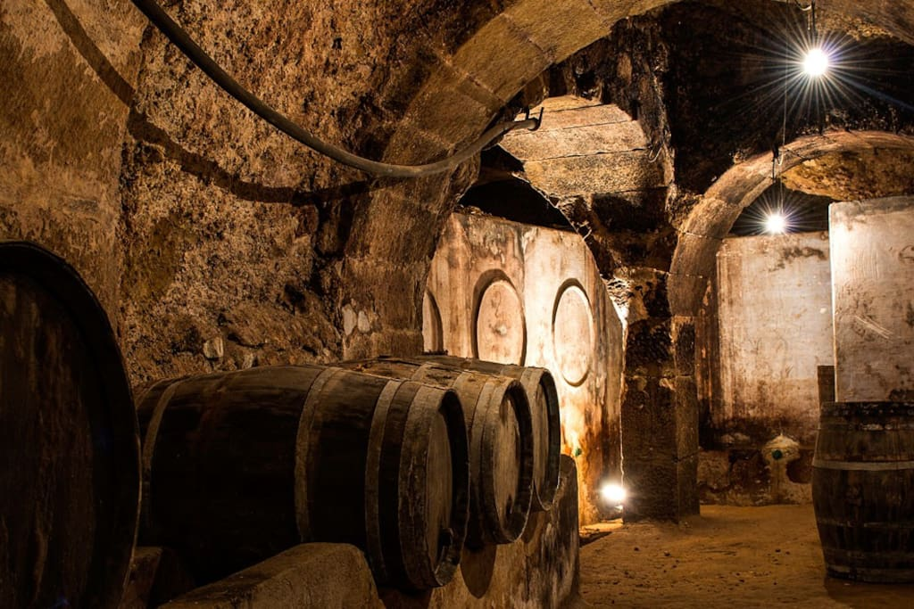 Cueva - Bodega