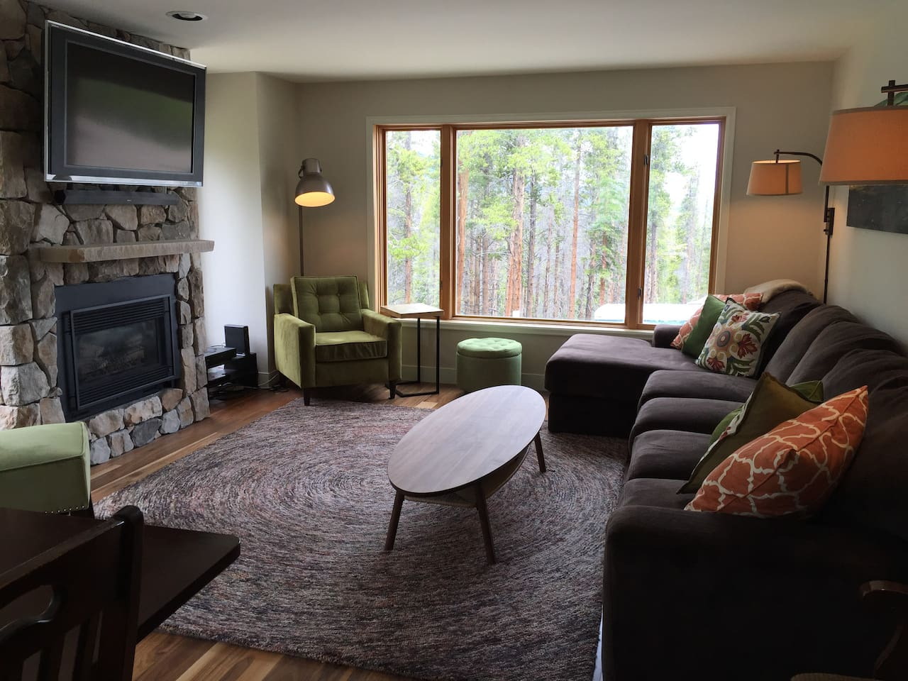 Cozy LR, view of mountains, fireplace