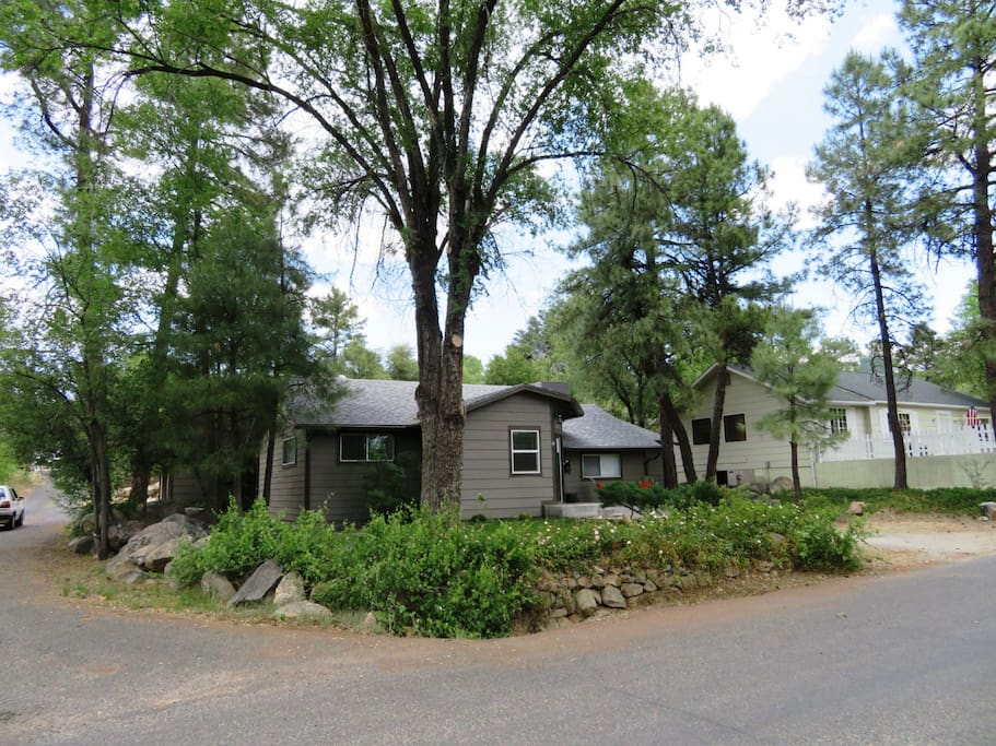 Large, Shady Trees Around Cottage in the Pines