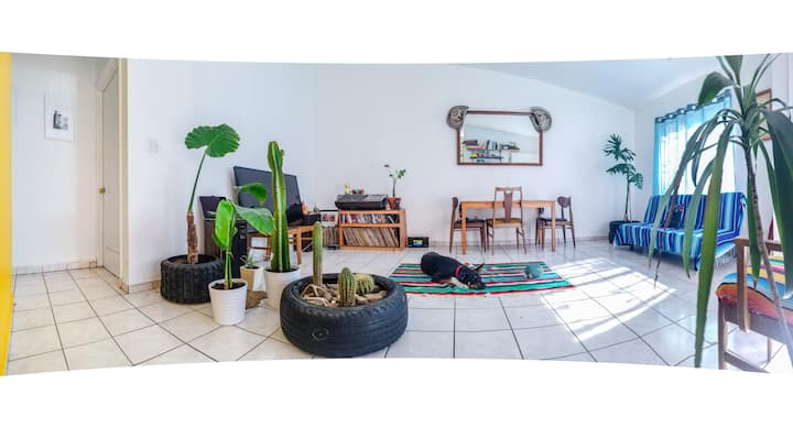 Chill and Colorful House in Tijuana