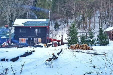 Inchiriez cabane in pădure