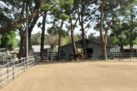 Farralone Farms Horse Rescue Ranch -  Vegetarian - Los Angeles